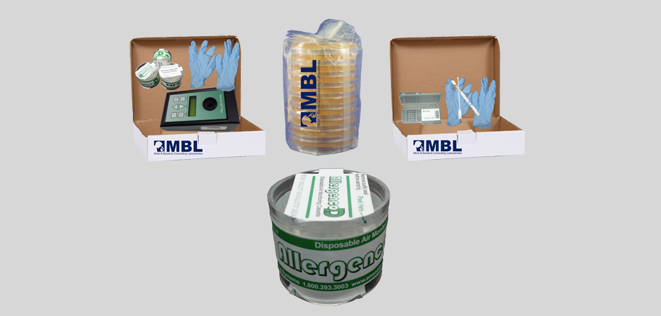 Do it yourself mold test kits