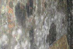 White Mold Is It Dangerous Mould Facts