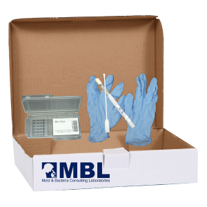 visible mold test kit